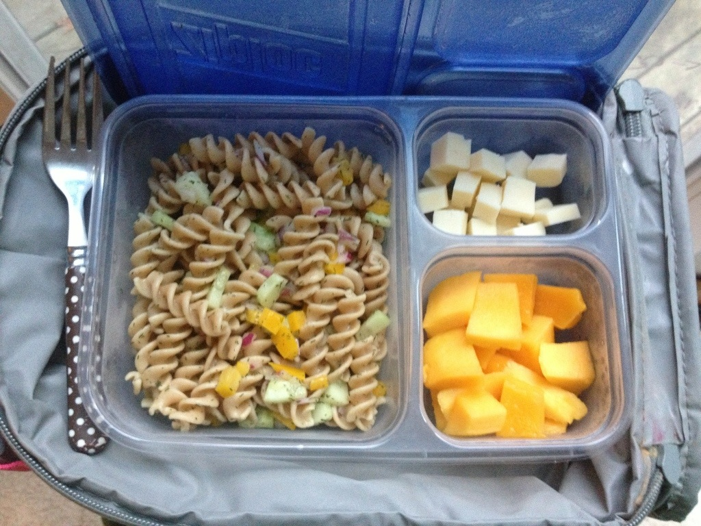 Pasta Salad (with whole wheat spiral noodles & vinegar/olive oil/dill dressing), Monterrey Jack cheese cubes, and diced mango.